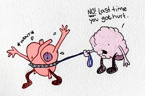amuse-brain-heart-heart-matters-love-Favim.com-47855
